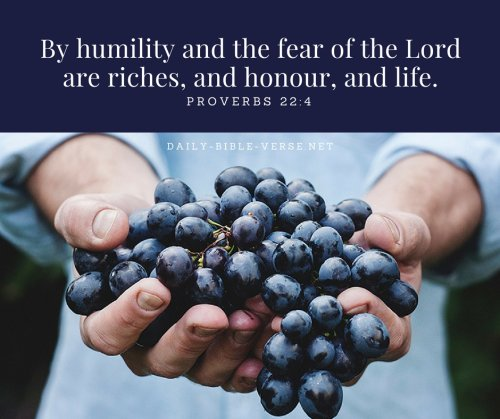 Daily Bible Verse | The Bible And Money | Proverbs 22:4 (KJV)